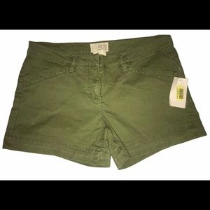 NWT Olive Green Shorts by Zinc